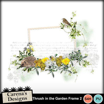 Thrush-in-the-garden-frame-2