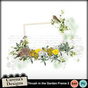 Thrush-in-the-garden-frame-2_small