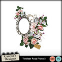 Timeless-rose-frame-3_small