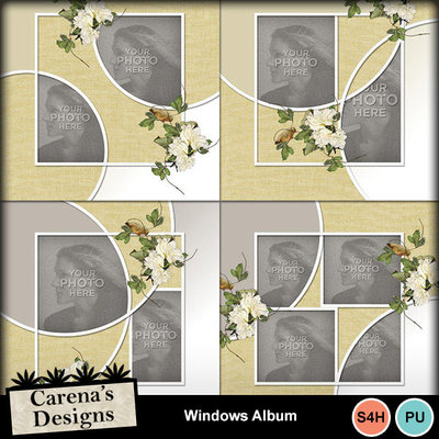 Windows-album-1