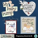 Pregnancy_word_art__1_-_01_small