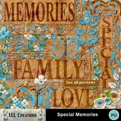 Special_memories-01