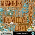 Special_memories-01_small