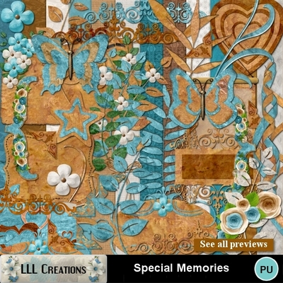 Special_memories-02