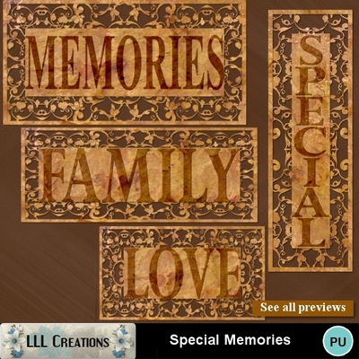 Special_memories-03