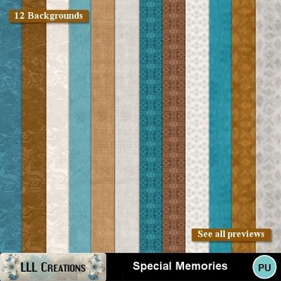Special_memories-09