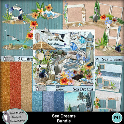 Csc_sea_dreams_wi_bundle