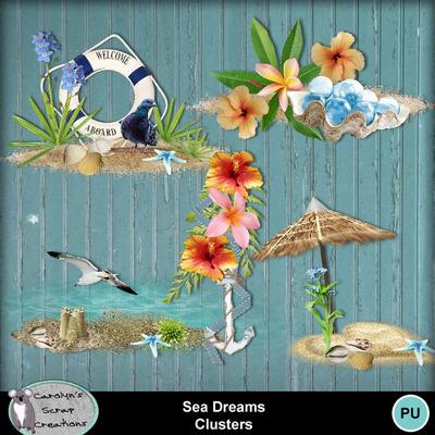 Csc_sea_dreams_wi_clusters