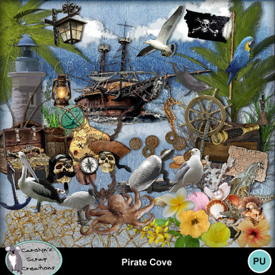 Csc_pirate_cove_wi_1