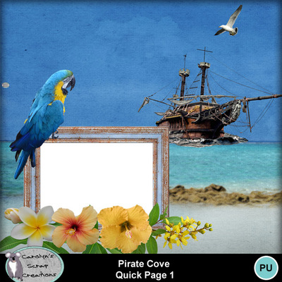 Csc_pirate_cove_wi_qp1