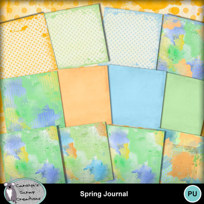 Csc_spring_journal_wi_4