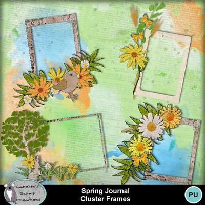 Csc_spring_journal_wi_cf