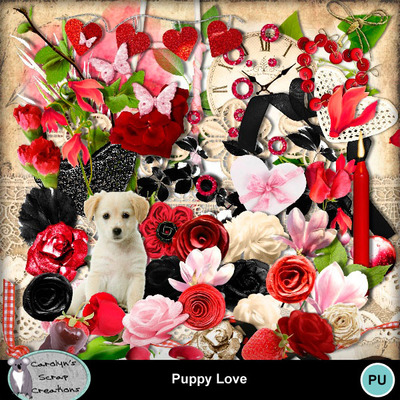 Csc_puppy_love_wi_1