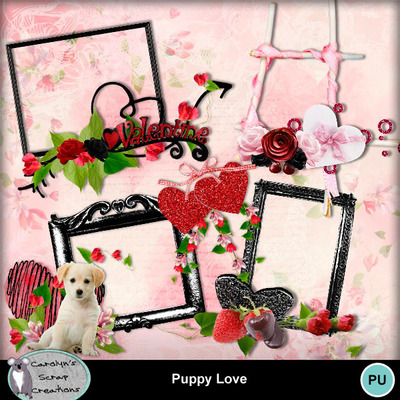 Csc_puppy_love_wi_5