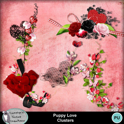 Csc_puppy_love_wi_clusters