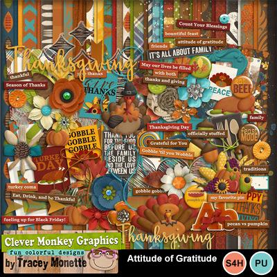 Cmg-attitude-gratitude