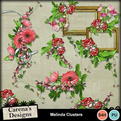 Melinda-clusters