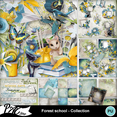 Patsscrap_forest_school_pv_collection