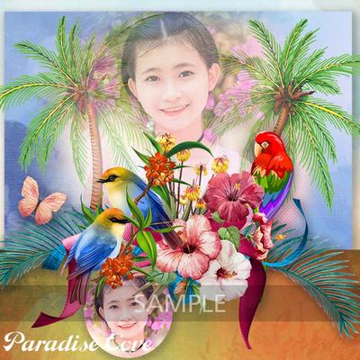 Paradise_cove_sample1