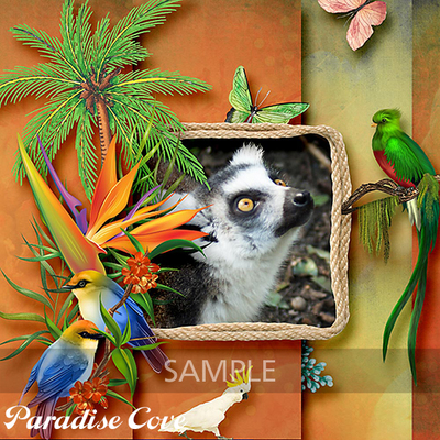 Paradise_cove_sample7