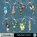 Pretty_rope_clusters-01_small