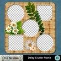 Daisy_cluster_frame-01_small