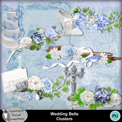 Csc_wedding_bells_wi_clusters