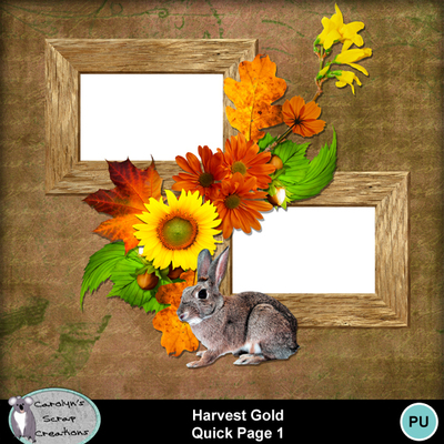 Csc_harvest_gold_wi_qp_1