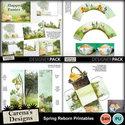 Spring-reborn-printables_small