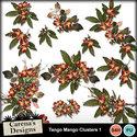 Tango-mango-clusters1_small