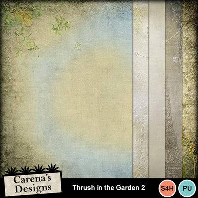 Thrush-in-the-garden-2_02