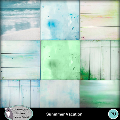 Csc_summer_vacation_wi_4