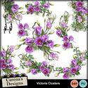 Victoria_clusters_small
