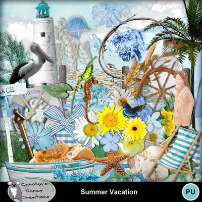 Csc_summer_vacation_wi_1