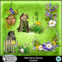 Csc_wild_about_spring_wi_clusters_small