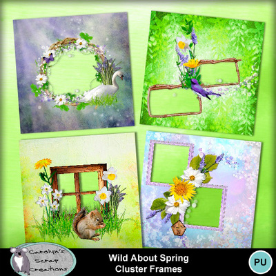 Csc_wild_about_spring_wi_qps