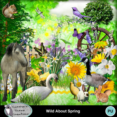 Csc_wild_about_spring_wi_1