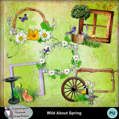 Csc_wild_about_spring_wi_2