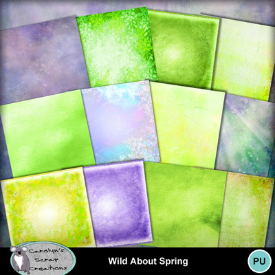 Csc_wild_about_spring_wi_3