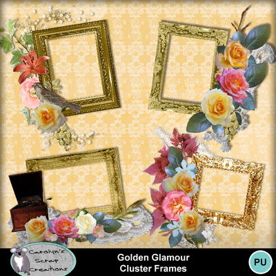 Csc_golden_glamour_wi_cf