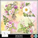 Dds_springspirit_clustersmm_small