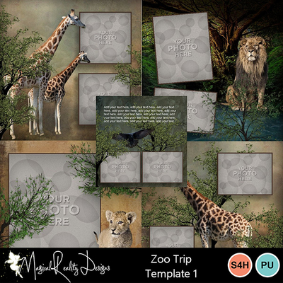 01zootrip_template1-001
