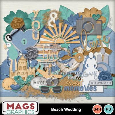 Mgx_mm_beachwedding_ep