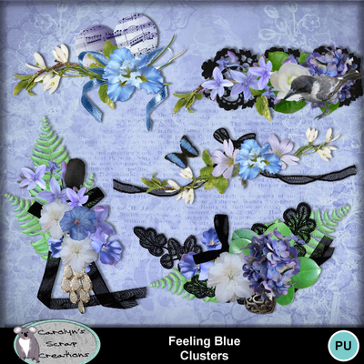 Csc_feeling_blue_wi_clusters