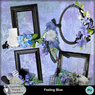 Csc_feeling_blue_wi_2