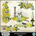 Csc_grandmas_treasures_wi_clusters_small