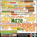 Cmg-where-the-pumpkins-grow-wa_small