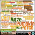 Cmg-where-the-pumpkins-grow-wa_small