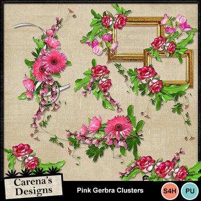 Pink-gerbra-clusters-pv
