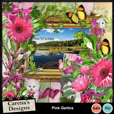 Pink-gerbra